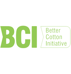 bci2020.png